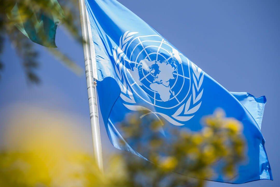 Día de las Naciones Unidas: Buscando la paz - Somos Hermanos