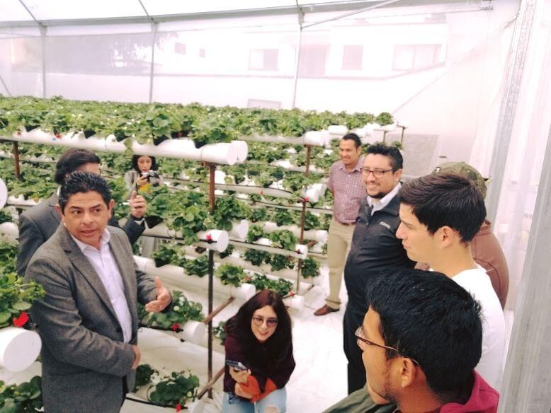 Desarrollan alumnos universitarios proyecto sustentable para IAP de Querétaro