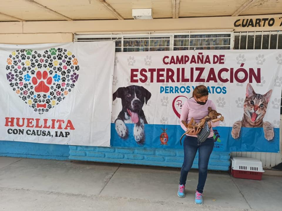 Desde Sinaloa buscan una huella de esperanza